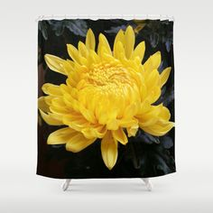 YELLOW 'MUM Shower Curtain by Annie Koh - $68.00
