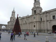 Cátedra de Arequipa