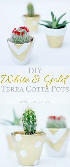 DIY White & Gold Terra Cotta Pots are the perfect accessory to any decor. Great paint craft idea and makes a great gift!