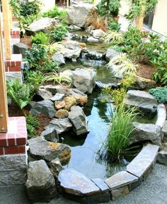 Lovely water feature