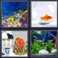 324 Mejores Imagenes De 4 Fotos 1 Palabra 7 Letras