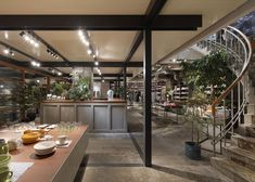 Suppose Design Office combines retail and gardening in Biotop store