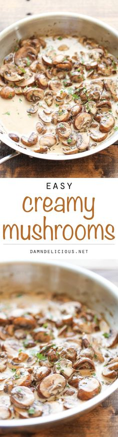 Easy Creamy Mushrooms - The easiest, creamiest mushrooms you will ever have - it's so good, you'll want to skip the main dish and make this a meal instead!