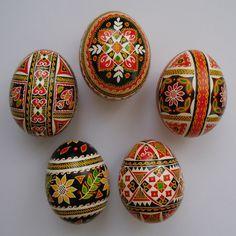 5 Real Ukrainian hand made Pysanky Easter Egg, Hutsul Pysanka, Chicken egg shell in Eggs | eBay
