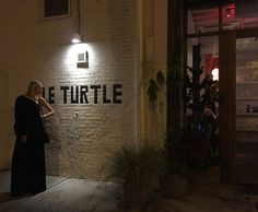 le turtle Turtle, Entertaining, York, Let It Be, Turtles, Tortoise, Funny