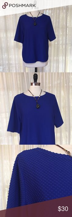 💜Chico's cobalt blue textured Swiss dot top Size 3, which fits like an XL. Exposed rear zipper. Polyester, spandex. EUC  💟Fast 1-2 day shipping 💟Reasonable offers accepted 💟Purchase 3 or more items & get a special bundle rate!  💟Smoke-free home Chico's Tops
