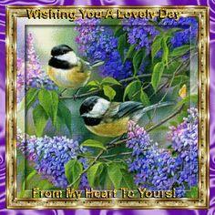 Birds with Lilac Flowers Diamond Painting Kit – DazzleCrafter Vogel Gif, 5d Diamond Painting, Bird Pictures, Quote Pictures, Little Birds, Wildlife Art, Bird Art, Belle Photo, Beautiful Birds
