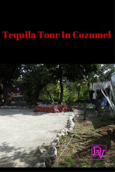 #TequilaTours in #Cozumel                                                                                                                                                      More