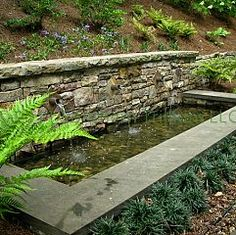 Idea to change pool into a water feature or pond idea.  just saying...with the drought an all.