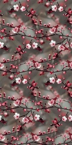 Spring wallpaper iphone quotes life Ideas for 2019 Iphone Wallpaper Herbst, Frühling Wallpaper, Glitter Wallpaper Iphone, Watercolor Wallpaper Iphone, Spring Wallpaper, Flower Phone Wallpaper, Holiday Wallpaper, Animal Wallpaper, Tumblr Wallpaper