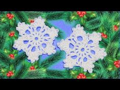 Снежинка крючком. Мастер класс. DIY snowflake crochet - YouTube Crochet Snowflakes, Flowers, Youtube, Diy Accessories, Royal Icing Flowers, Flower, Youtubers, Florals, Youtube Movies