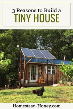 Thinking about living off the grid? Here's how we selected a solar electric system, considering cost of a photovoltaic system and energy use. Off Grid Homestead, Homestead Farm, Solar Power Information, Solar Electric System, Water Catchment, Architecture Today, Going Off The Grid, Tiny House Community, Building A Tiny House