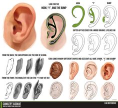 Ear Tutorial Resource by ConceptCookie.deviantart.com on @deviantART