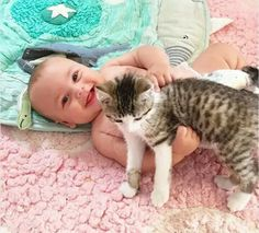 Animals And Pets, Cute Animals, Cute Friends, Dog Boarding, Dog Photos, Beautiful Cats, Belle Photo, Cute Kids, Cats And Kittens