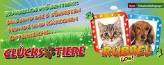 RUBBELLOS || Österreich suchte zusammen mit dem Rubbellos und der Mediazone die süßesten Hunde und Katzen Österreichs. Ca. einen Monat lang konnten alle Österreicher online oder per Post ihre Lieblinge einschicken und der Community zur Wahl stellen. Herausgekommen sind die je 5 süßesten Hunden und Katzen Österreichs. Monat, Poster, Cute Dogs And Cats, Animals, Movie Posters