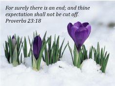Proverbs 23:18 KJV
