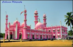 Pink Mosque by A. Fairoosh, via Flickr