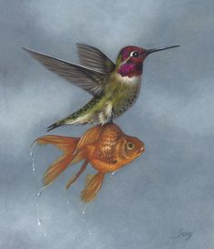 Ballard Artwalk: Colored Pencil Work by Eileen Sorg will be Showing at Venue for the Month of November