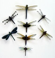 Dragonfly Magnets Clear wings, Set of 8 Refrigerator Magnets, Insects Handmade, Kitchen Decor