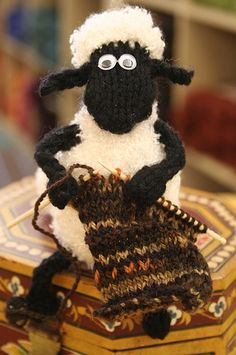 Sheep Knitting