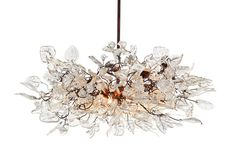 What a stunning chandelier!
