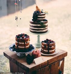Pretty sight: Brooklyn-based baker Alana Jones-Mann likes to emphasize the 'rustic' appeal of naked cakes with seasonal fruit and fresh comp...