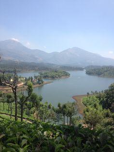 Blue Mountain at Munnar