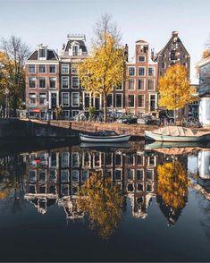Autumn mood of Amsterdam . Amsterdam Weed, Amsterdam Photos, Amsterdam Shopping, Visit Amsterdam, Amsterdam City, Amsterdam Netherlands, Yellow Tree, Dream City, Buy Prints