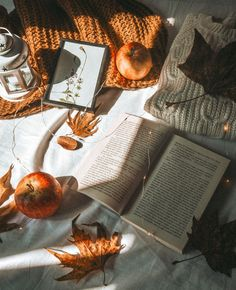 Autumn, book, bookstagram, apple, nature, flatlay Autumn Aesthetic, Book Aesthetic, Flat Lay Photography, Book Photography, Autumn Flatlay, Flat Lay Inspiration, Tumblr Image, Autumn Cozy, Stay In Bed