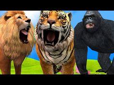 Lion Finger Family Rhymes | Lion Vs Animals Finger Family | Daddy Finger Family Song | Kids Songs - YouTube
