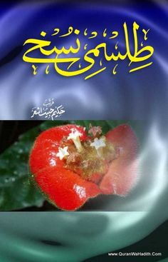 Tibb e nabawi english tibb books hindi pinterest english tilismi nuskhe best urdu books on tib e unani unani book urdu book forumfinder Gallery