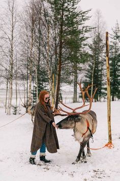 lapland, finland: the perfect winter wonderland — prêt-à-provost Vacation Spots, Vacation Ideas, Vacation Outfits, Winter Photography, Travel Photography, Winter Christmas Scenes, Treehouse Hotel, Finland Travel, Lapland Finland