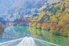 水上から優雅に!遊覧船でゆったり楽しむ紅葉絶景4選【東海】