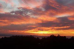 Bay Area Sunset!