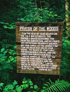 prayer of the woods...amor!