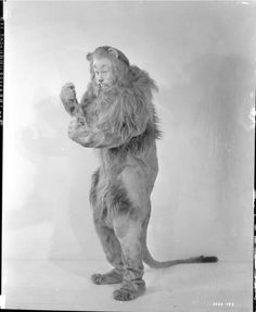 Camera negative of Bert Lahr from The Wizard of Oz by George Hommel.