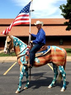 12 Horses That Are Totally Pumped for the 4th of July « HORSE NATION