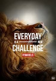 Accept your challenges Good Motivation, Fitness Motivation Pictures, Lion Quotes, Animal Quotes, Positive Quotes, Motivational Quotes, Inspirational Quotes, Life Inspiration, Fitness Inspiration