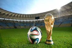 Russia has insisted that it won't have any Brazil-like problems in hosting 2018 World Cup.