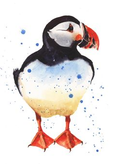 Puffin by Alison Fennell