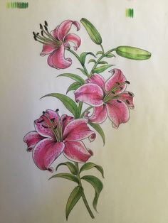 Lily Wallpaper, Fabric Paint Designs, Watercolor Tattoo, Tattoos, Flowers, Painting, Tatuajes, Florals, Painting Art