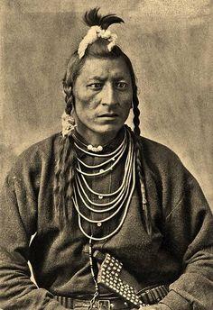 Owl - Blackfoot - 1886
