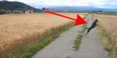 Cuando el dueño de este perro deja que su compañero canino corra libre en un campo, algo increíblemente adorable sucede...