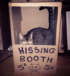 Hissing booth.  Max!