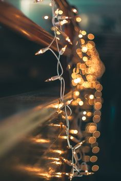 What is Bokeh? The Quick Way to Produce Beautiful Bokeh Photography