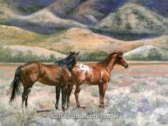 carole andreen harris artist | Horse painting by Carole Andreen-Harris | Art - Horses | Pinterest