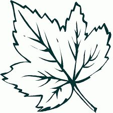 ideas embroidery leaf coloring pages