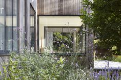 Gallery of House in the Woods / Alma-nac - 3