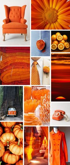 {Get Braizen}AUG 23, 2013 – The Study of Orange → http://getbraizen.com/2012/08/the-study-of-orange