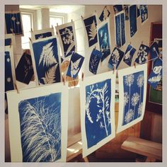 Moira Fuller Cyanotype course at Gibson Mill